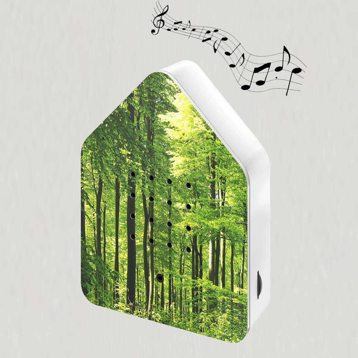 Zwitscherbox skov